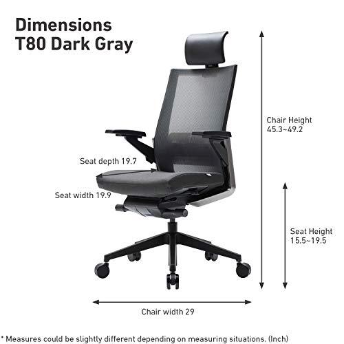 SIDIZ T80 Home Office Desk Chair : German Ultimate Sync Mechanism for Precise Adjustment, Adjustbale Headrest, Fresh Mesh Back, Lumbar Support, 3-Way Adjustable Armrests, Seat Slide/Slope