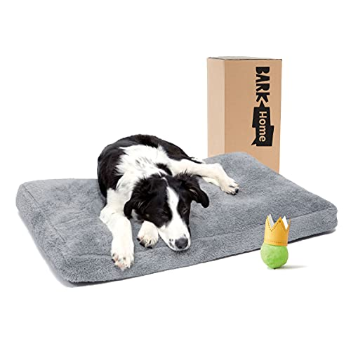 BarkBox Orthopedic Dog Bed, With Crate Pillow Cushion.