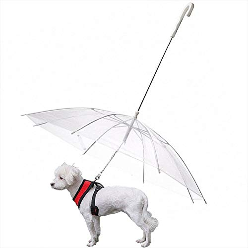 Ombrello per Cani con guinzaglio, Adatto a i Cani di Piccola e Media Taglia, Trasparente, Adatto a Neve e Pioggia