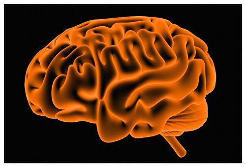 Wallario Rutschfester Teppich Fußmatte Menschliches Gehirn in Leuchtend orangener Farbe, Größe 150 x 100 cm