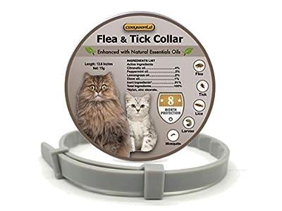 Flea Tick Prevention for Cats - Cat Flea Collars Flea Tick Prevention Cat Flea Treatment Flea Protection Pet Flea Collars Fit All Cats Fleas Ticks for Flea Control Cats