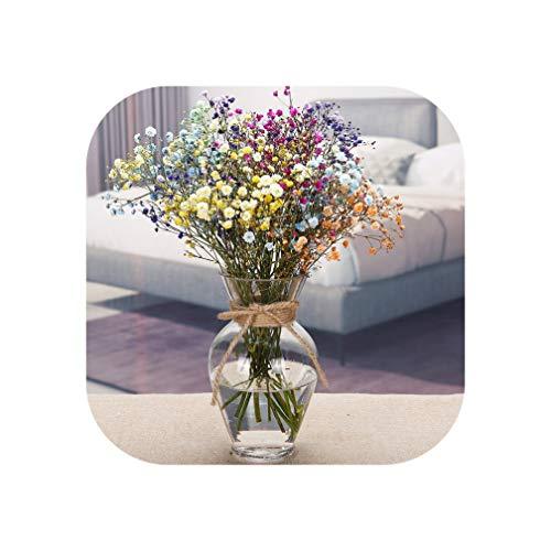 Transparent Multicolor Glass Vase Terrarium Glass Containers Flower Vases Wedding Decoration Table Centerpieces Flowerpot,Small
