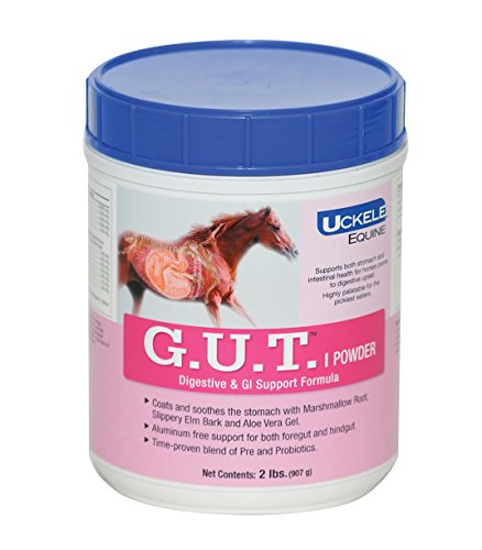 Uckele GUT Horse Supplement , 2-Pound