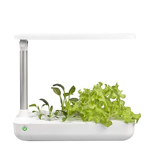 VegeBox Cultivo Hidropónico Interior Table | 9 Hoyos de