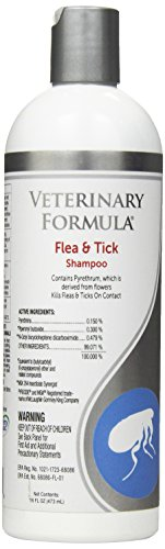 Veterinary Formula Clinical Care Flea and Tick Shampoo for Dogs and Cats with Pyrethrum to Kill Fleas and Ticks On Contact – Cleanses and Exfoliates