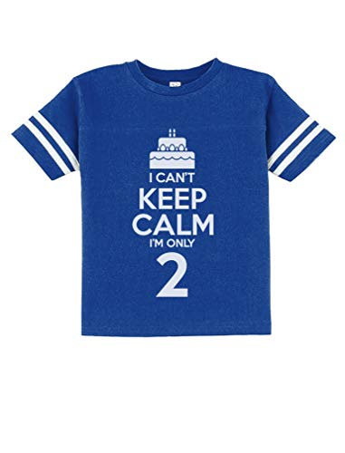 Birthday Cake - I Can't Keep Calm I'm Only 2 Children Cute Toddler Jersey T-Shirt 2T Blue
