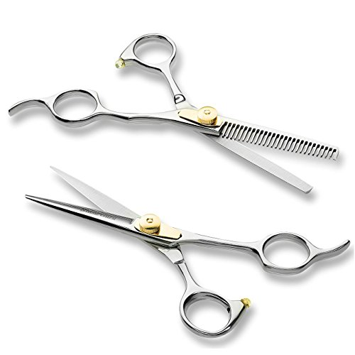 Professional Barber/Salon Scissor Hair Cutting Set - 6.5'-Straight Edge Razor Sharp Scissor + Texturizing Thinning Shears Styling Hair for Women Men, Plus Bonus Faux Leather Case - By ShearGuru