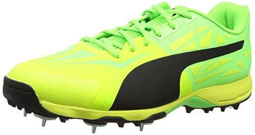 Puma Evospeed 1.5 Cricket Spike, Chaussures Homme, Jaune (Safety Yellow Black-Green Gecko 03), 39 EU