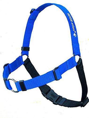 The Original Sense-ation No-Pull Dog Training Harness