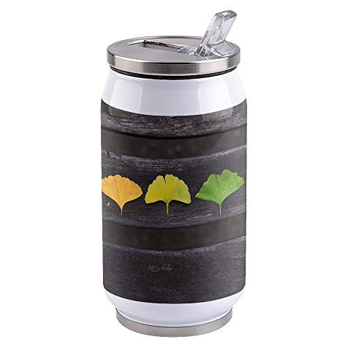 Water Bottle | Vacuum Insulated Stainless Steel Water Bottle 10oz | Simple Style Color Change of Autumn Ginkgo Leaves | Double Walled Water Bottles | Wide Mouth with Straw Lid | Leak Proof Flip-Top