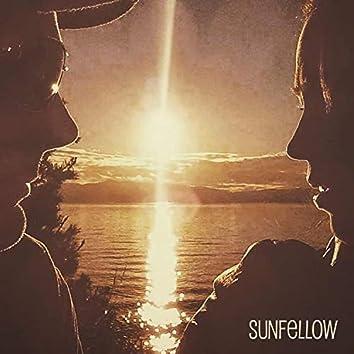 Sunfellow