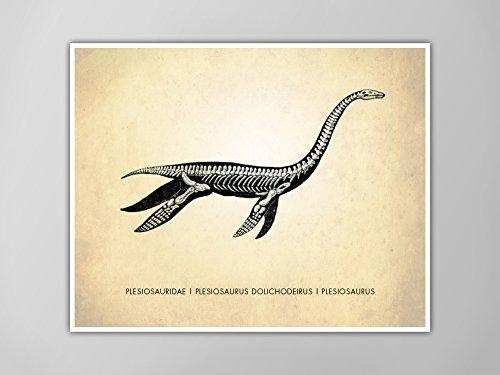 Amazon.com: Plesiosaurus Dinosaur Art Print, Dinosaur Natural History  Poster, Natural History Dinosaur Print, Loch Ness Monster Poster, Dinosaur  Print: Handmade