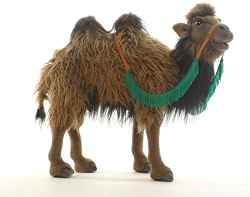 Bactrian camel No.5585 (japan import)
