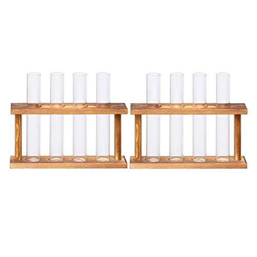 N/A/a 2 Piezas de Vidrio de Cristal Tubo de Ensayo Planta Terrario...