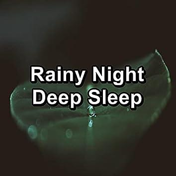 Rainy Night Deep Sleep