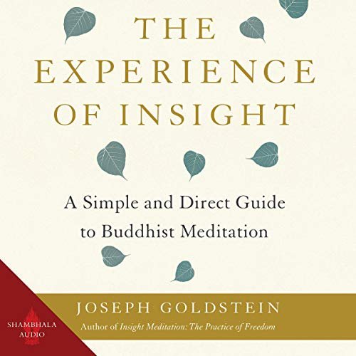 The Experience of Insight Titelbild