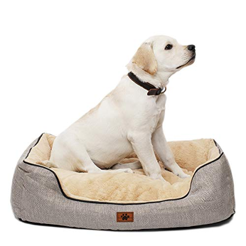 WINDRACING Self Warming Pet Bed for Small, Medium, Large Dog & Cat Comfy Calming Anti Anxiety Dog Bed Non-Slip Bottom Dog Sofa Couch Chew Resistant Dog Bed Machine Washable, Grey, Medium