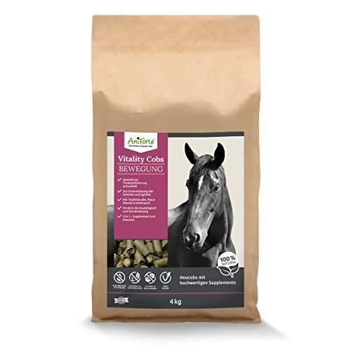 AniForte Vitality Cobs 2 in 1 Heucobs & Bewegung Pferd 4kg - Gelenk Pferd, Teufelskralle Pferd, Maca Wurzel & Weihrauch, Unterstützung der Gelenke Pferd & Agilität, teufelskralle für Pferde
