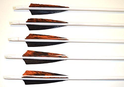 Holzpfeile Pfeile aus Kiefernholz weiß mit Naturfedern 5/16 bis 30 – 40 lbs - 2