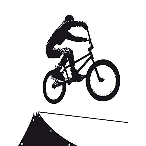 Wee Blue Coo Painting Sport BMX Bike Bicycle Jump Air Ramp Black White Art Print Poster Wall Decor 12X16 inch
