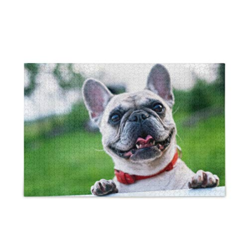 KLL French Bulldog Puzzle 500 Piece Jigsaw Puzzle Kids Adult Jigsaw Puzzle Game Toys Gift
