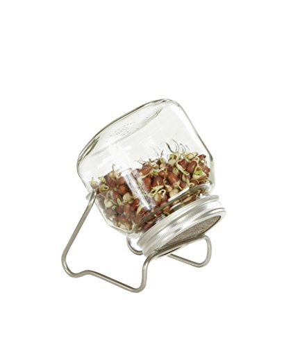 Eschenfelder - Bote de Cristal para brotes (750 ml, con Estructura de Acero Inoxidable)