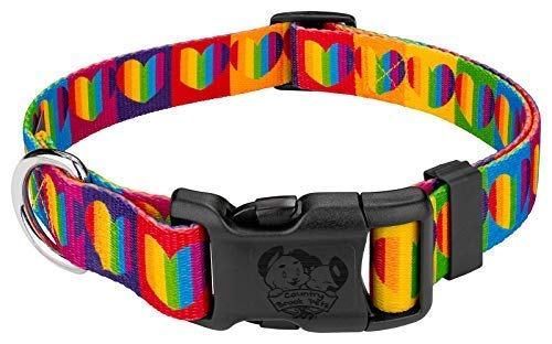 Country Brook Petz - Deluxe Rainbow Hearts Dog Collar - Medium