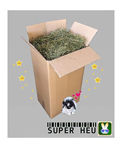 heukorb.de Heu für Kaninchen & Meerschweinchen 1. Schnitt frühe Ernte TOP Qualität (18-19kg)