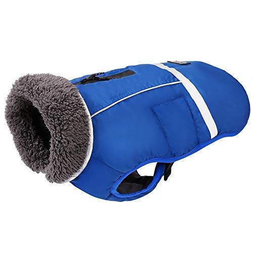 Penivo Kaltes Wetter reflektierende Mäntel einstellbar Hund Kleidung Winter wasserdicht im Freien Hund Jacke verdicken warme Hundemantel für kleine mittelgroße Hundepullover (M, Blau)