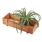 HERCHR Maceta de Madera, Maceta Rectangular Vintage, Home Deco Jardinera de Madera para jardín o terraza 22.7 * 10 * 4.8cm