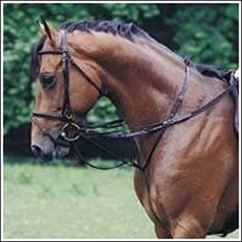 H&B HB Thiedemann Zuegel - Size Pony