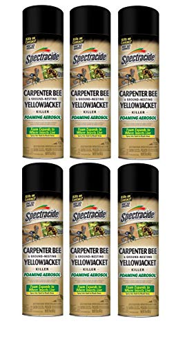 Spectracide Stinging Insects Killer (Carpenter Bee & Ground-Nesting...