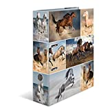 HERMA 7164 Motiv-Ordner DIN A4 Animals Pferde, 7 cm breit aus stabilem Karton mit Tier-Motiv Innendruck, Ringordner, Aktenordner, Briefordner, 1 Ordner