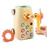 BBLIKE Juguetes Montessori educativos Juegos niños 2 3 4 años Bebes, 3 en 1...