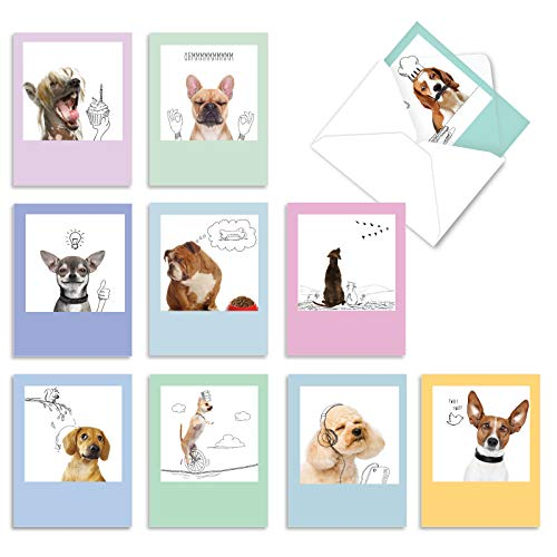 The Best Card Company - 10 Blank Dog Greeting Cards for All Occasions (4 x 5.12 Inch) - Dogs & Doodles M6582OCB
