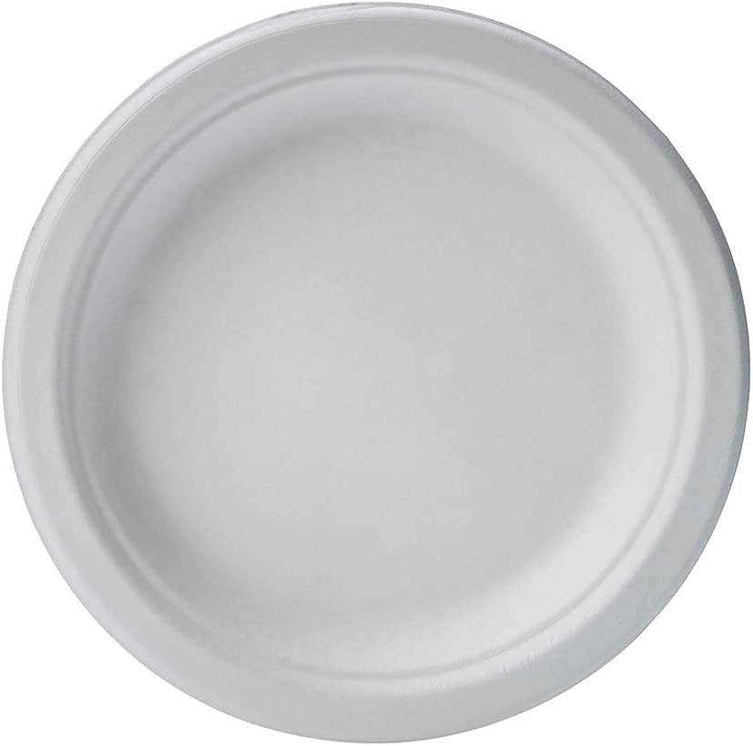 Morex Compostable Plate 3 Compartment Plates Fees free 500 9 in Price reduction