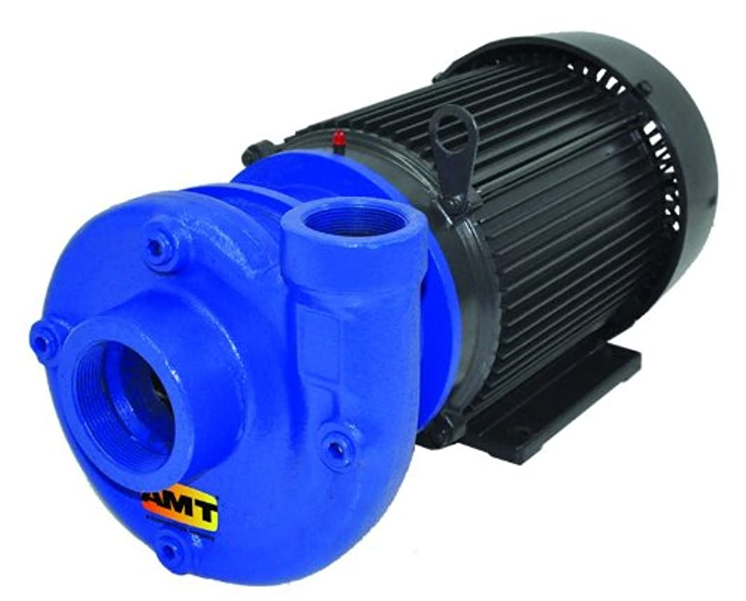 AMT Pump 315A-98 Heavy Duty Straight Centrifugal Pump, Stainless Steel, 3 HP, 1 Phase, 230/460V, Curve B, 2