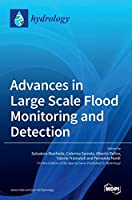 Advances in Large Scale Flood Monitoring and Detection