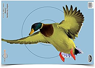Best paper duck targets Reviews