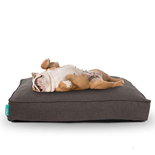 Hyggins Lounger Plus Hundekissen   orthopädisch, Bezug abnehmbar   Boden wasserabweisend...