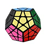 RENFEIYUAN Rubix Dodecahedron 3x3, Brain Teaser 3D Toys Educational Games Presents for Boys Girls Rubik piramix