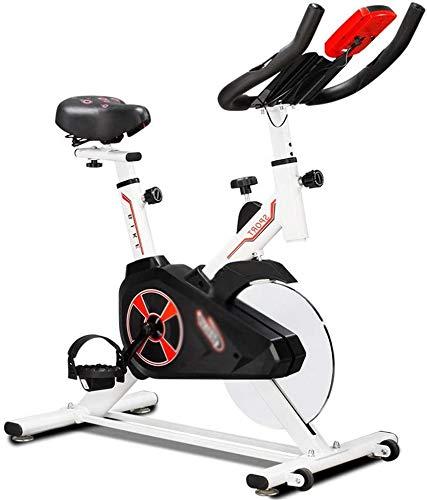 DYB - Bicicleta estática profesional para interior y gimnasio para entrenamiento cardiovascular