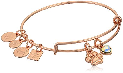 Alex and Ani Women's Paw Print Duo Charm Bracelet, Shiny Rose Gold