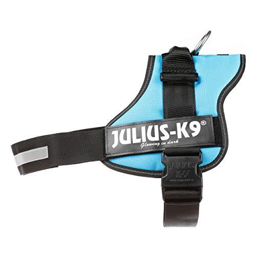 JULIUS-K9 - Arnés para perros, color Azul, talla 2XL / 3