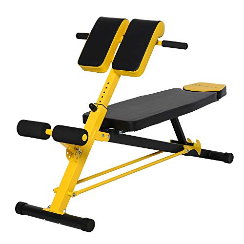 Soozier Folding Adjustable Hyper Extension Bench Roman Chair Dumbbell Weight Ab Multifunction Workout Press