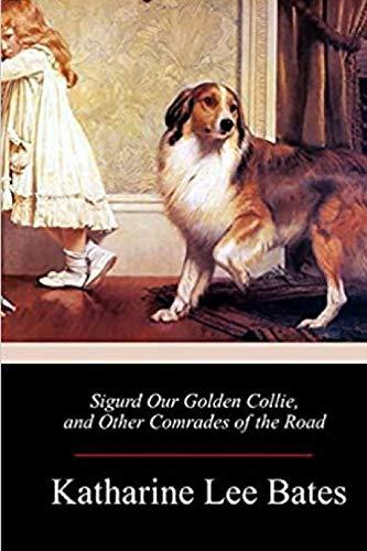 Sigurd Our Golden Collie
