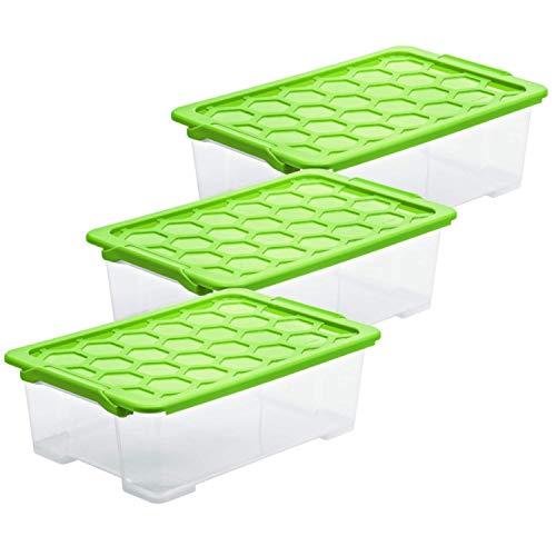 Rotho Evo Safe Keeping 3er-Set Aufbewahrungsboxen 30 l mit Deckel, Kunststoff (lebensmittelecht) BPA-frei, grün/transparent, 3 x 30l (59,0 x 39,5 x 18,5 cm)