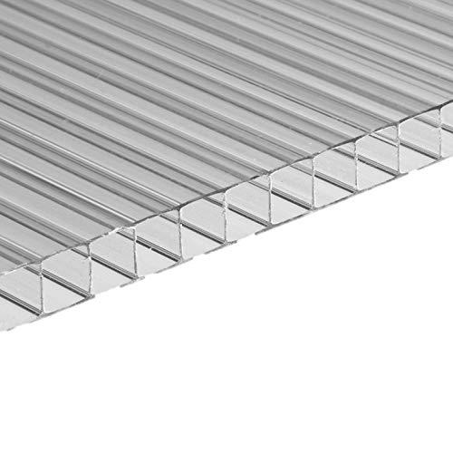 ezooza - Panel de policarbonato alveolar de doble pared, 200 x 98 cm, 10 mm de grosor, transparente