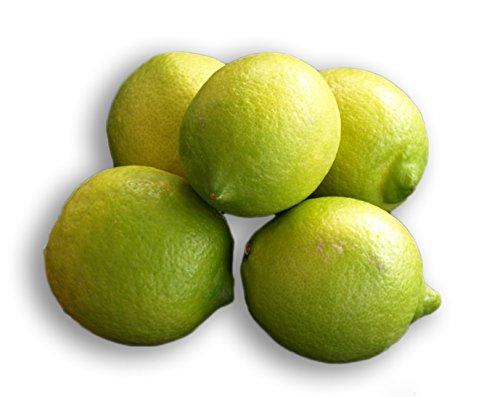 ARISTOS unbehandelte Zitronen aus Griechenland Schale zum Abreiben geeignet (Kilopreis) Ernte: März 2020 frische griechische Zitronen