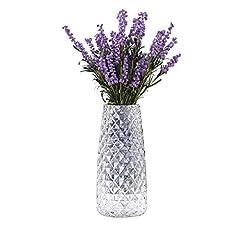 Idea Regalo - Fubao, vaso da fiori in vetro trasparente, 22 cm, vaso da fiori di cristallo, grande vaso da tavolo centrotavola per casa, giardino, caffetteria, decorazione(colore trasparente)